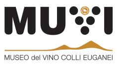 Logo_MUVI_nero+oro_small