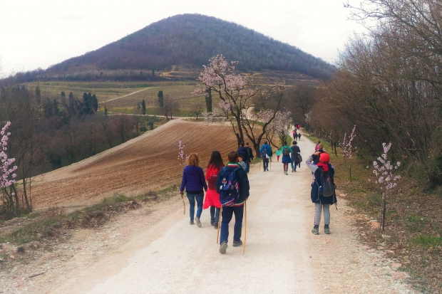 Escursioni Colli Euganei